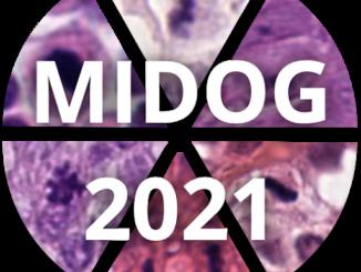 MIDOG Challenge